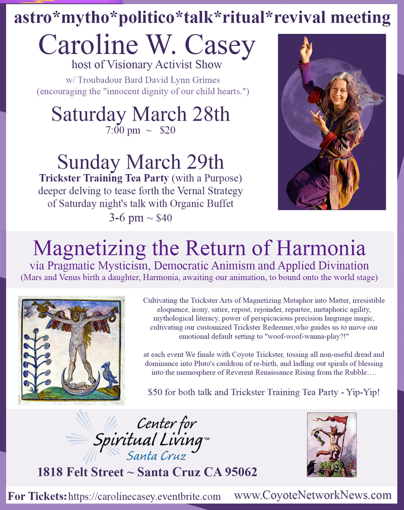 Flyer for Caroline Casey Event March 2015